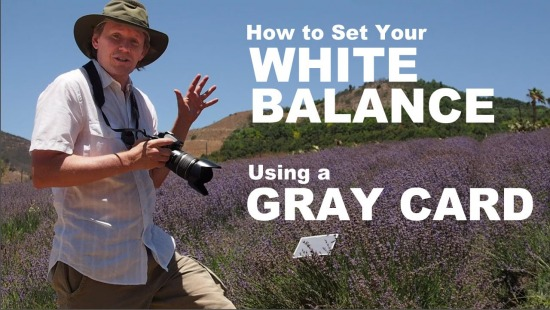 Set Your Camera White Balance with a Gray Card